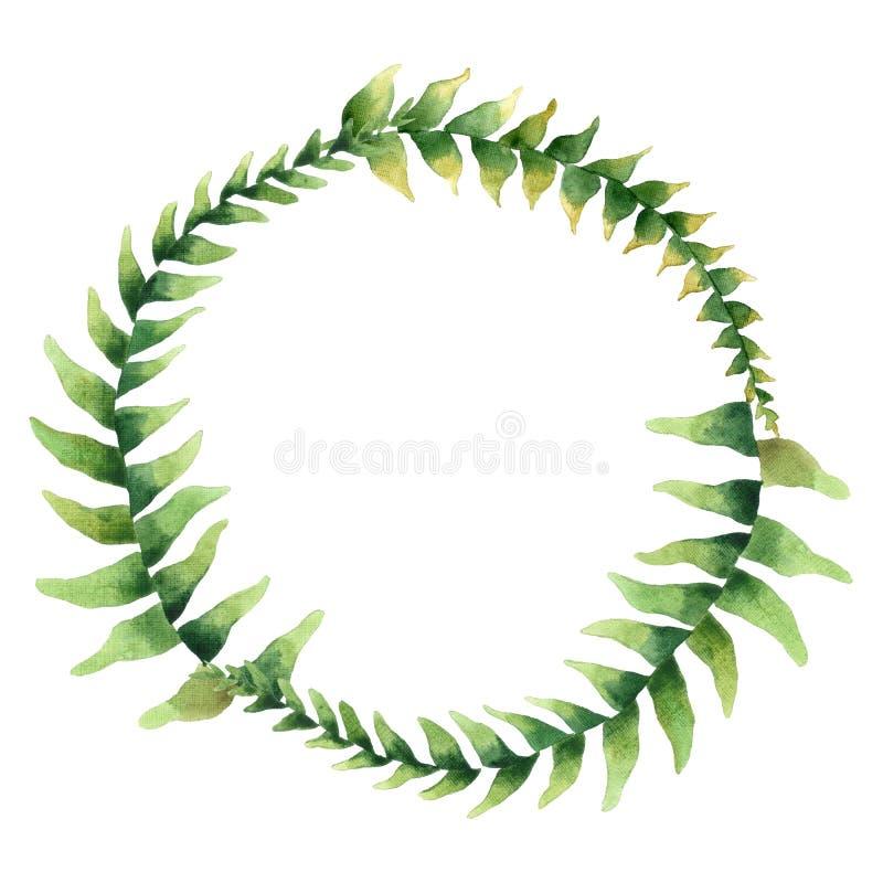 Quadro da aquarela com folhas tropicais greenery Ilustra??o floral do projeto element ilustração stock