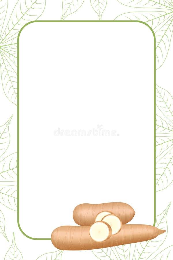 Quadro da bandeira da mandioca fresco para o espaço da cópia, a fatia do corte da mandioca para a moagem das tapiocas ou o álc ilustração stock