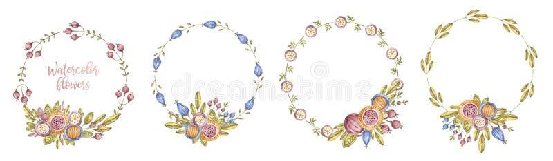 Quadro da flor do watercolour do c?rculo ajustado no branco fotos de stock