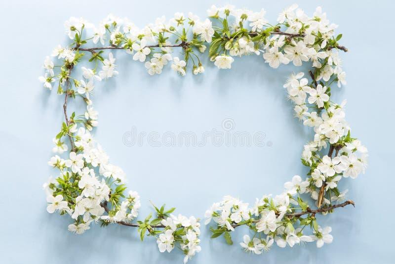 Quadro da flor da mola fotos de stock