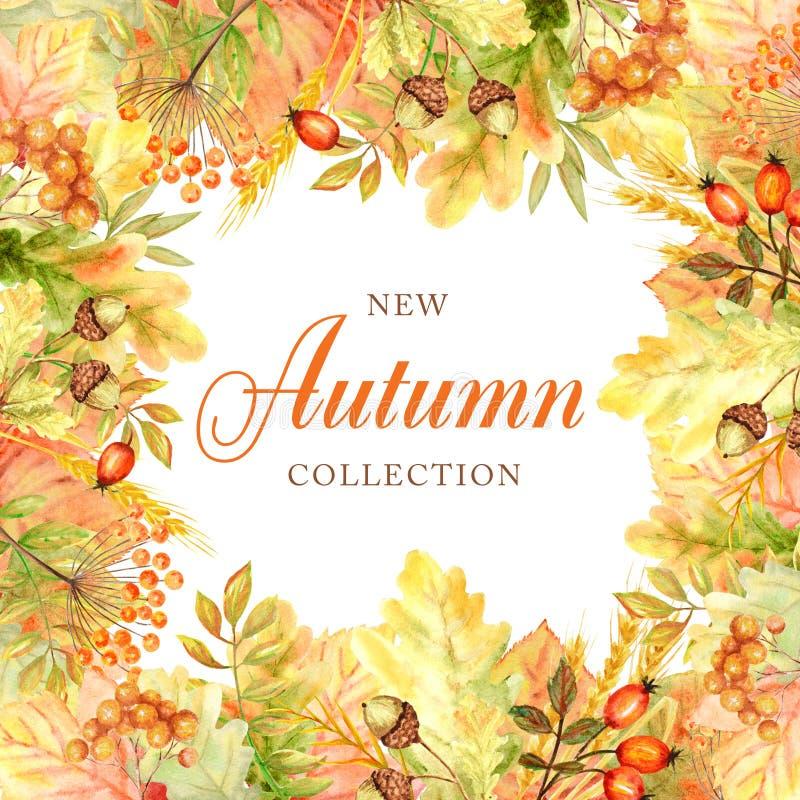 Quadro da folha do outono isolado em um fundo branco Ilustração tirada mão da folha do outono da aquarela Cole??o nova do outono imagens de stock royalty free