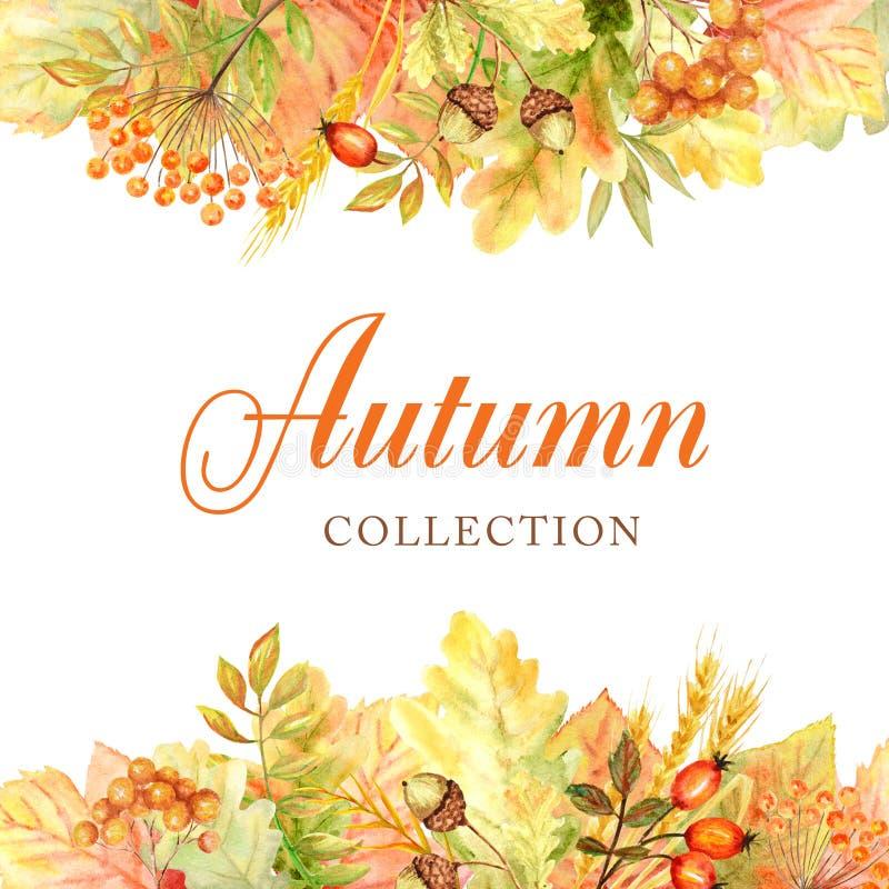 Quadro da folha do outono isolado em um fundo branco Ilustração tirada mão da folha do outono da aquarela Cole??o nova do outono foto de stock