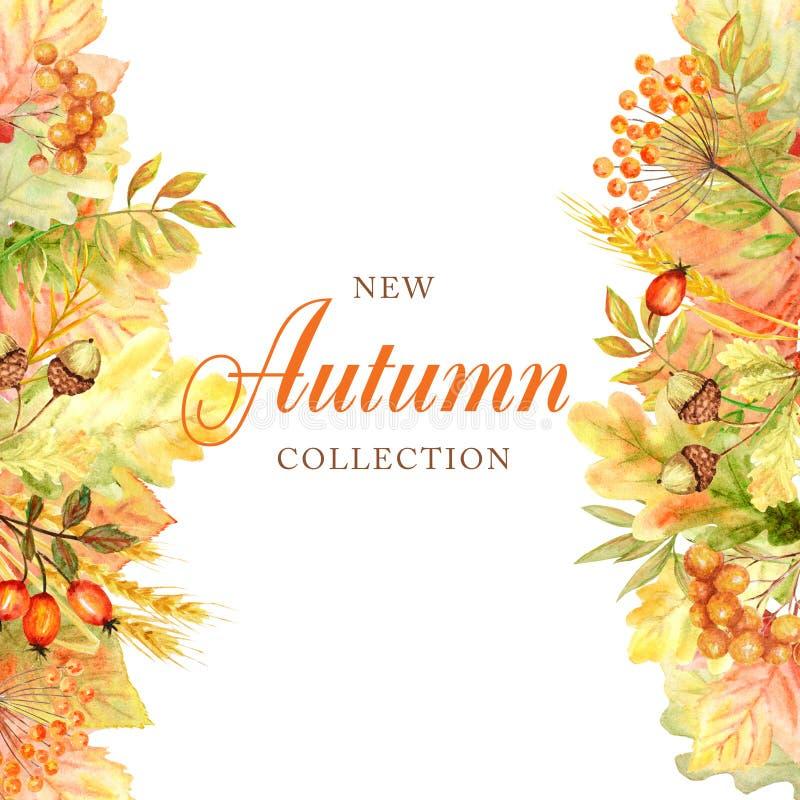 Quadro da folha do outono isolado em um fundo branco Ilustração tirada mão da folha do outono da aquarela Cole??o nova do outono imagem de stock