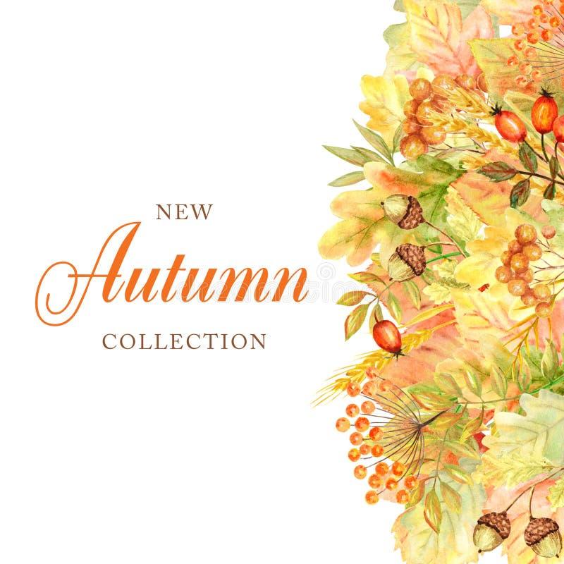 Quadro da folha do outono isolado em um fundo branco Ilustração tirada mão da folha do outono da aquarela Cole??o nova do outono ilustração royalty free