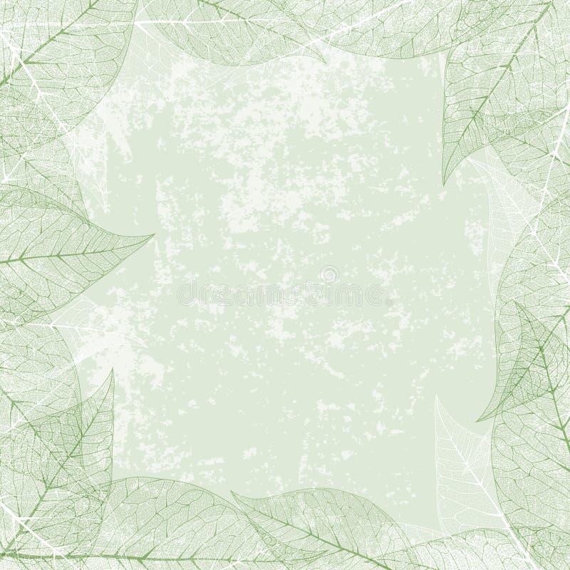 Quadro da folha no fundo do Grunge do vintage ilustração stock