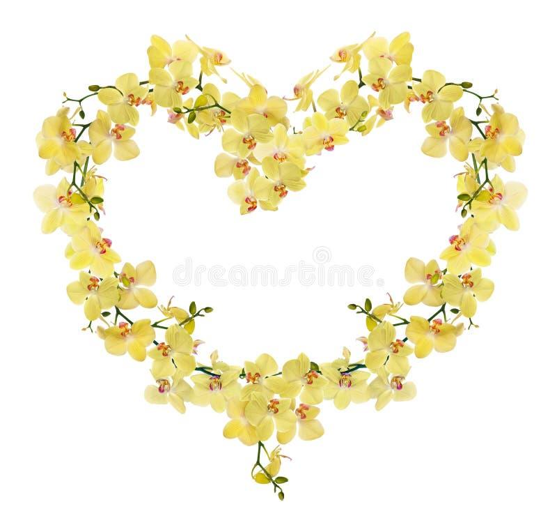 Quadro da forma do coração das flores amarelas da orquídea imagens de stock royalty free