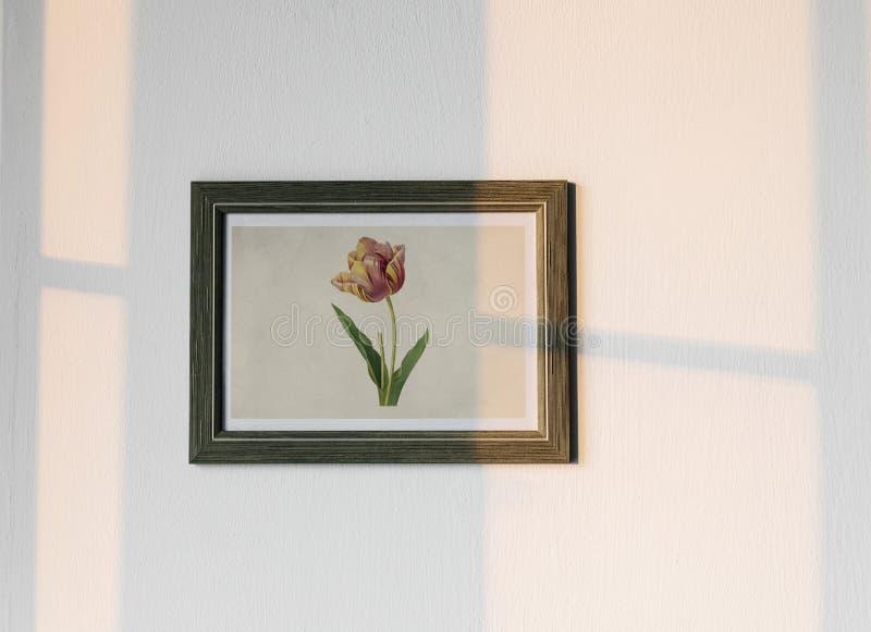 Quadro da foto da flor que pendura na parede branca ilustração do vetor