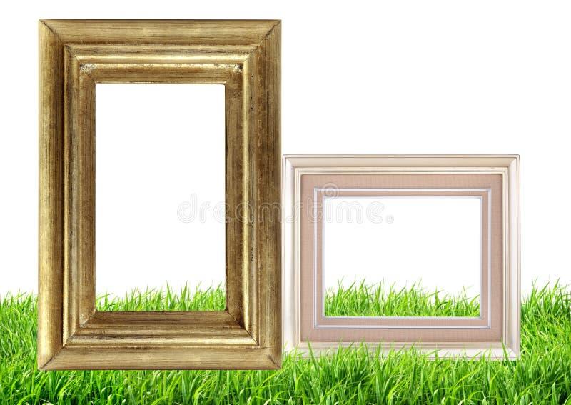 Quadro da foto na natureza da grama verde foto de stock