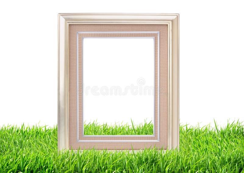 Quadro da foto no fundo da natureza da grama verde imagens de stock royalty free