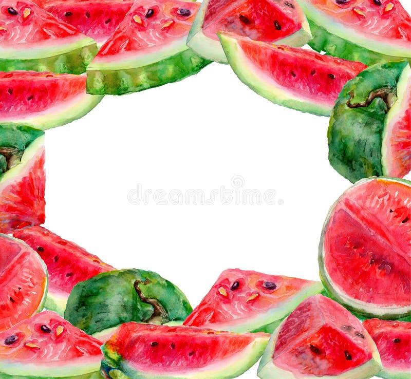 Quadro da melancia da uva ilustração royalty free