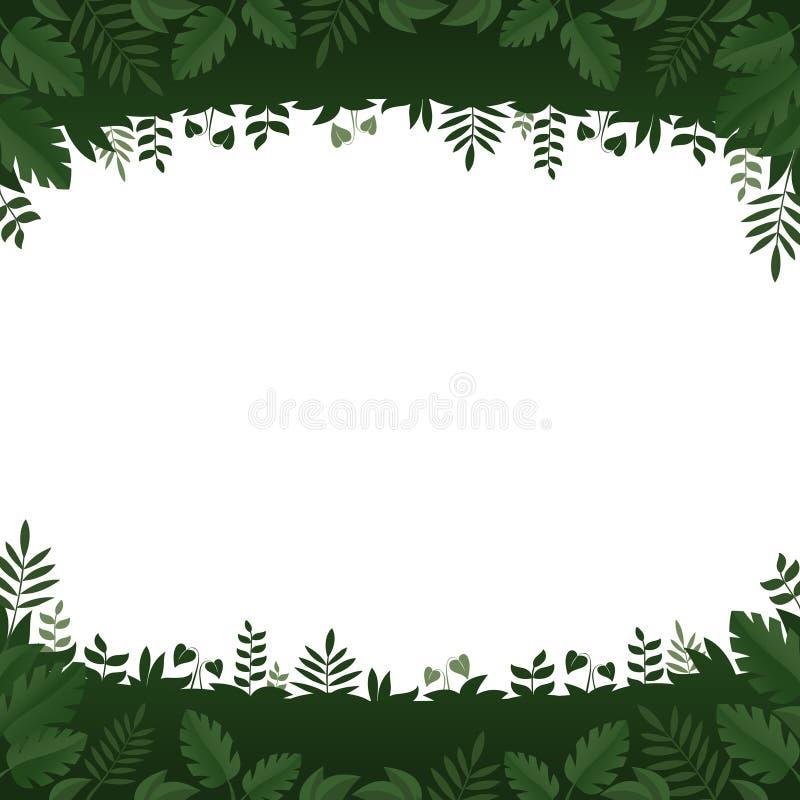 Quadro das folhas e das plantas do verde no fundo branco ilustração royalty free