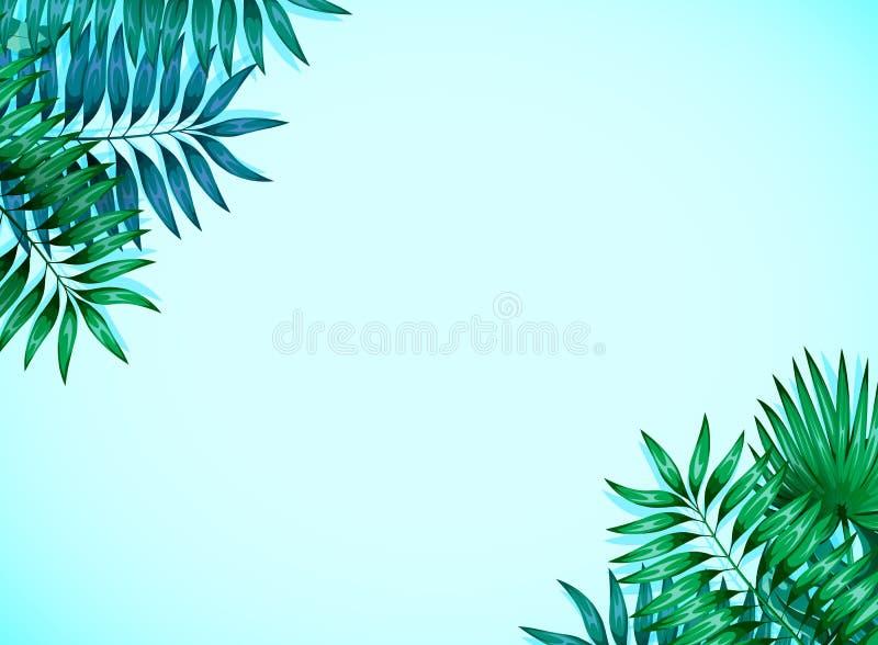Quadro das folhas tropicais coloridas Conceito da selva para o projeto dos convites, dos cart?es e dos pap?is de parede ilustração do vetor
