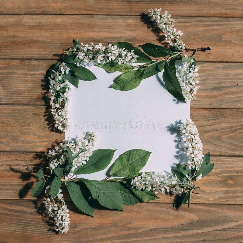 Quadro de flores brancas e folhas sobre fundo de madeira foto de stock