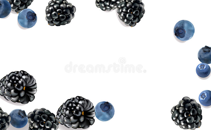 Quadro de frutos de baga no fundo branco imagens de stock royalty free