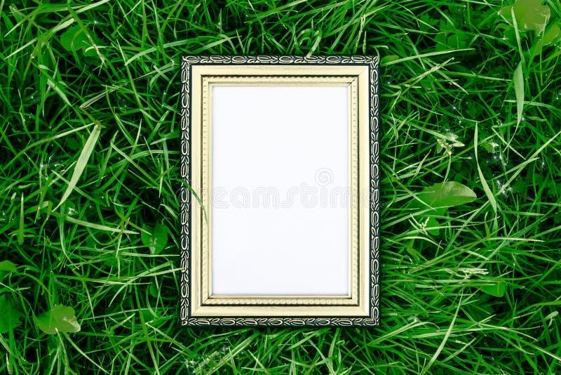 Quadro de madeira dourado no fundo da grama verde, no luxo e no conceito da natureza imagens de stock