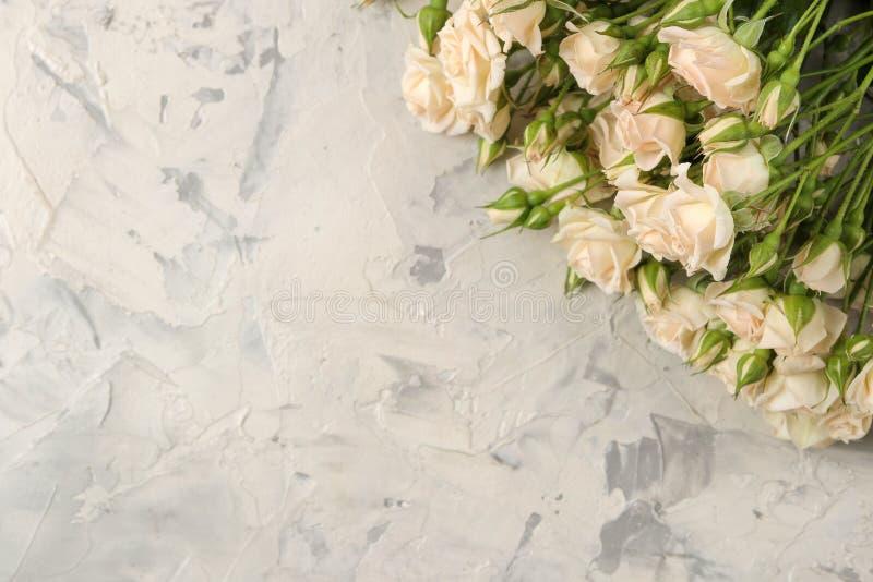 Quadro de mini rosas bonitas em um fundo do betão leve Flores bonitas feriados Vista de acima fotografia de stock royalty free