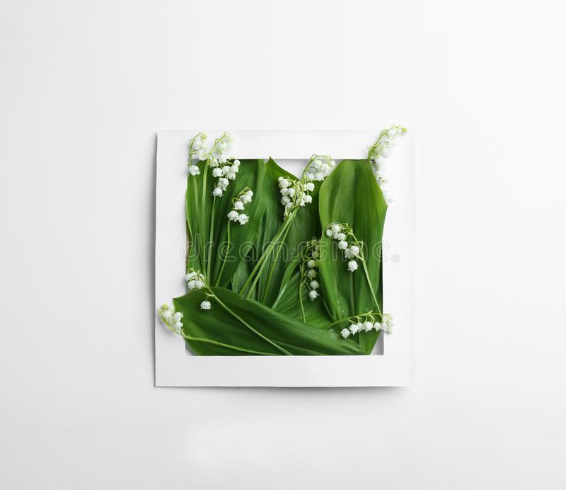Quadro de papel com o lírio das flores do vale no fundo branco fotos de stock