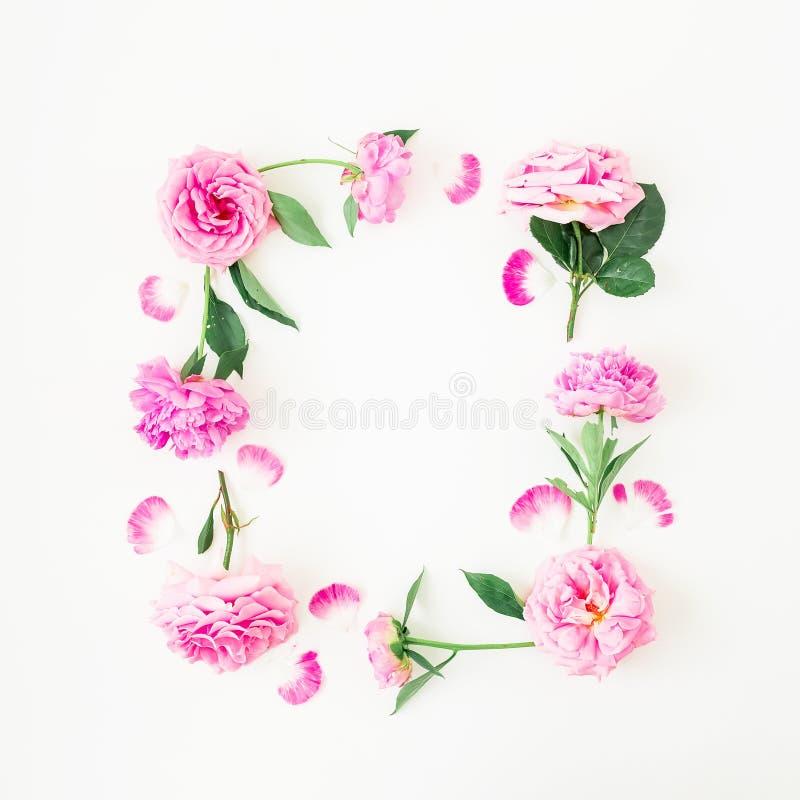 Quadro de rosas e de peônias cor-de-rosa no fundo branco Composição floral Configuração lisa, vista superior imagens de stock