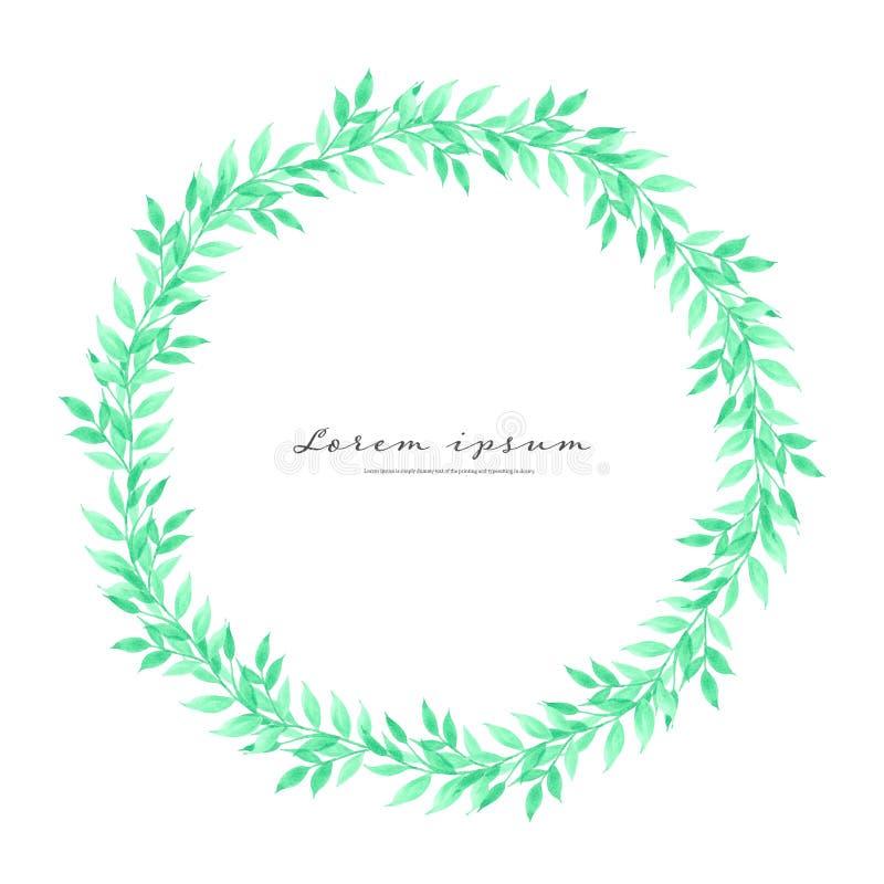 Quadro do círculo da aquarela das folhas, quadro do vetor de Minimalistic com aquarela das folhas, composição botânica, elemento  ilustração do vetor