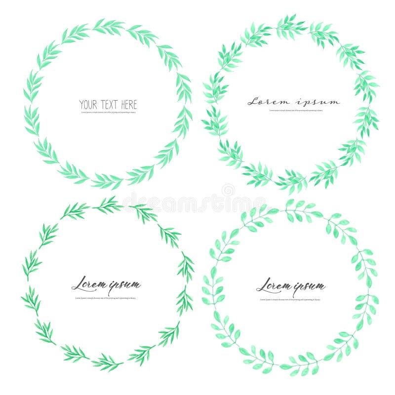 Quadro do círculo da aquarela das folhas, quadro do vetor de Minimalistic com aquarela das folhas, composição botânica ilustração stock