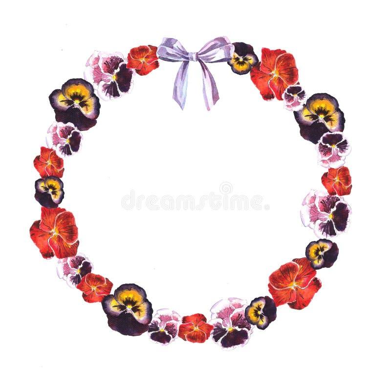 Quadro do círculo da aquarela de violetas vermelhas, roxas, cor-de-rosa e da curva roxa ilustração do vetor