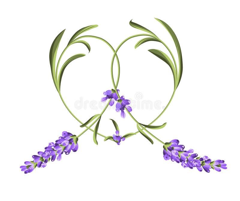 Quadro do coração da flor da alfazema ilustração royalty free