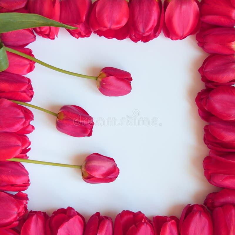 Quadro do dia dos Valentim ou de mães - fotos conservadas em estoque imagem de stock royalty free
