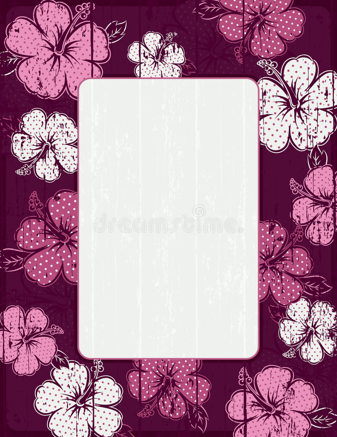 Quadro do hibiscus, vetor ilustração do vetor