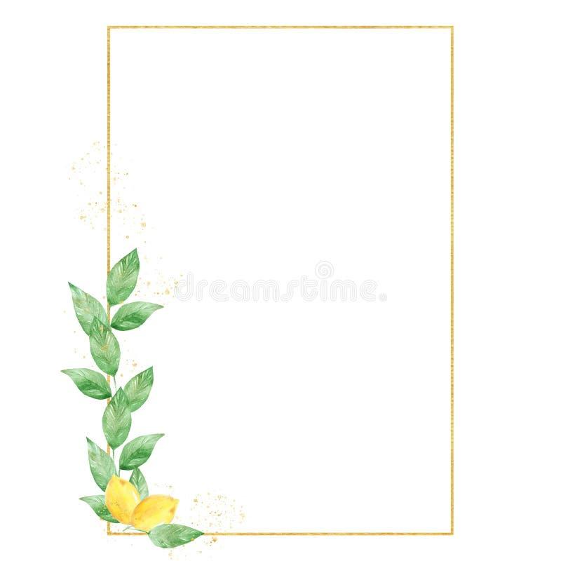 Quadro do lim?o das hortali?as da aquarela em cores do verde e do ouro Quadro, beira, fundo ilustração stock
