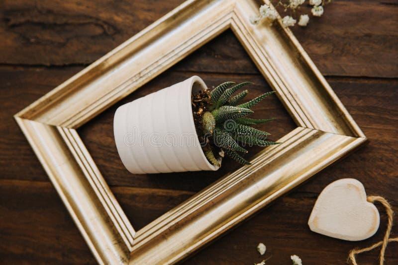 Quadro do ouro com potenciômetro de flor fotos de stock