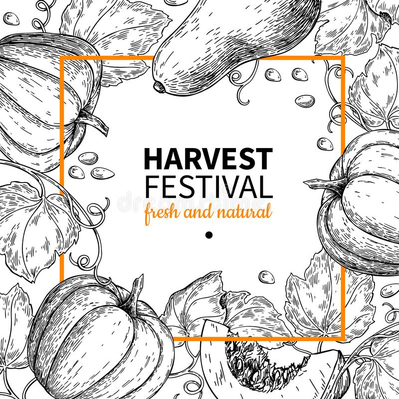 Quadro do vetor da abóbora Ilustração tirada mão do festival da colheita do vintage Esboço do mercado da exploração agrícola ilustração do vetor