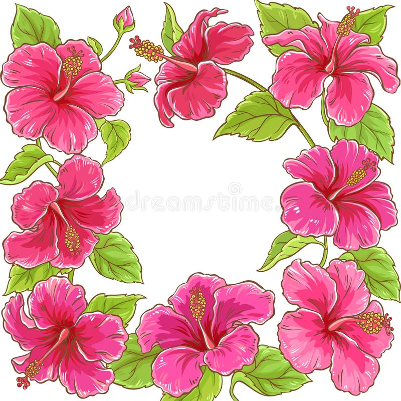 Quadro do vetor do hibiscus ilustração stock