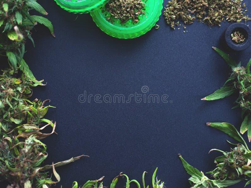 Quadro dos botões da marijuana em um escuro - espaço azul da cópia do fundo as flores do cannabis modelam a configuração lisa imagem de stock royalty free