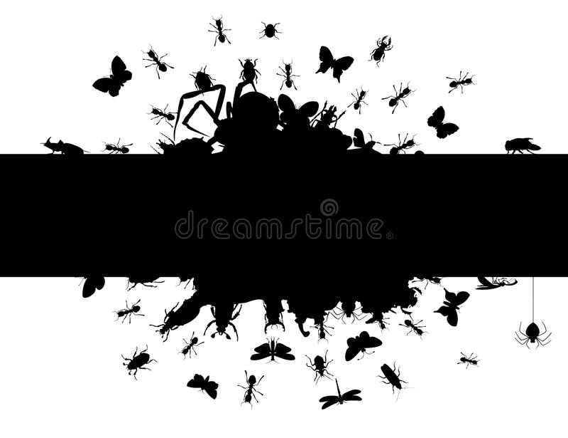 Quadro dos insetos ilustração royalty free