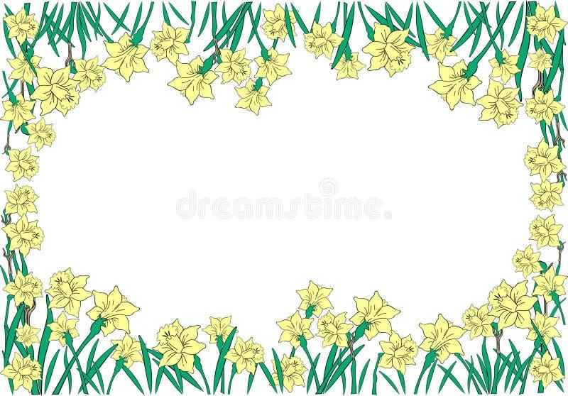 Quadro dos narciso amarelos ilustração stock