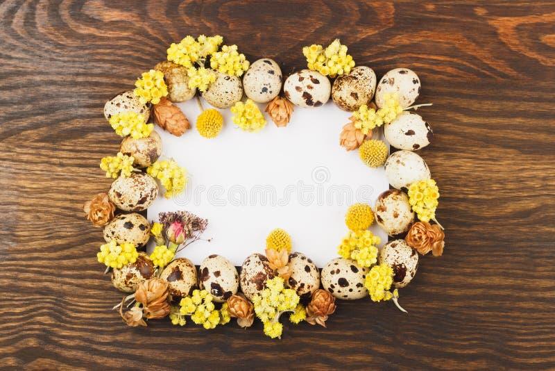 Quadro dos ovos de codorniz e das decorações, fundo de madeira imagens de stock royalty free