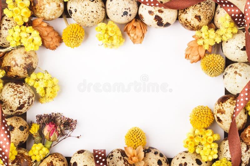 Quadro dos ovos e das decorações de codorniz imagem de stock royalty free