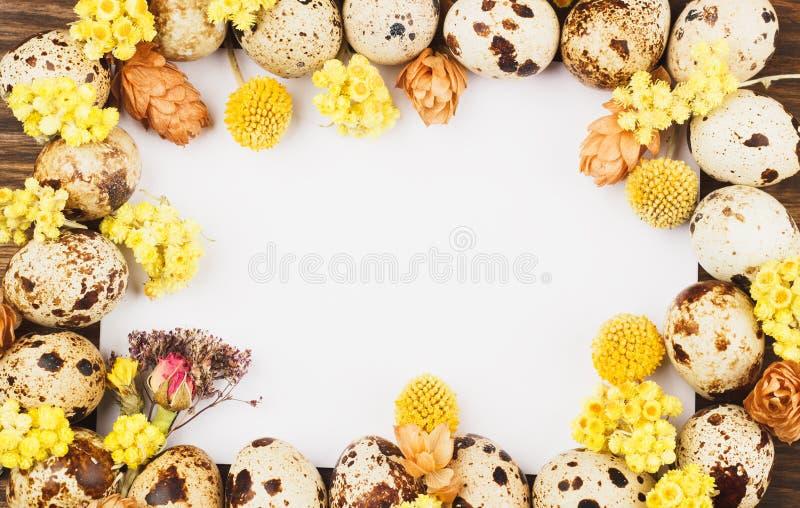 Quadro dos ovos e das decorações de codorniz fotografia de stock
