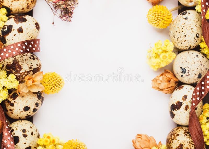 Quadro dos ovos e das decorações de codorniz imagens de stock