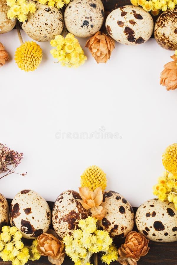 Quadro dos ovos e das decorações de codorniz fotos de stock
