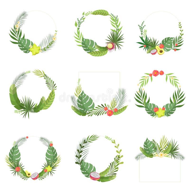 Quadro elegante tropical das folhas e das flores com lugar para seu grupo do texto, beira da folha da floresta úmida, bandeira, c ilustração royalty free