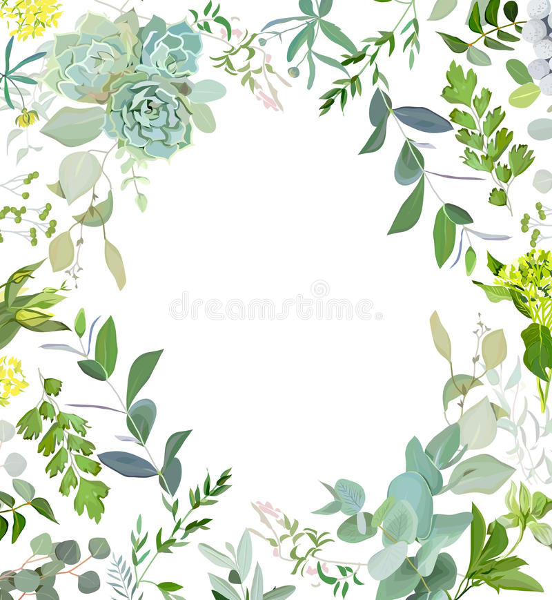 Quadro erval do vetor do quadrado da mistura Plantas pintados à mão, ramos, folhas, plantas carnudas e flores no fundo branco