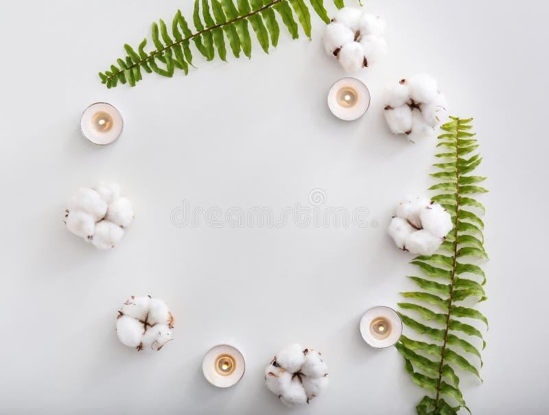 Quadro feito de velas de queimadura, de flores do algodão e das folhas tropicais no fundo branco imagem de stock royalty free