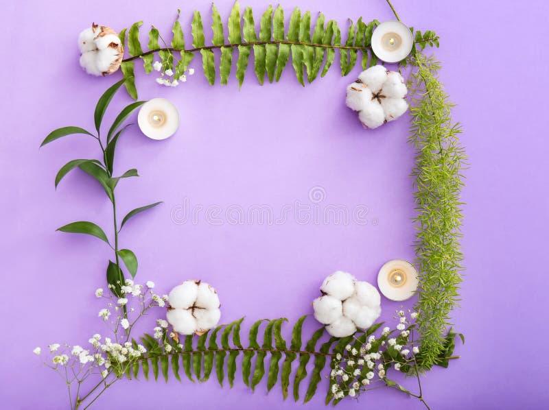 Quadro feito de velas de queimadura, de flores do algodão e das folhas tropicais no fundo da cor imagem de stock royalty free