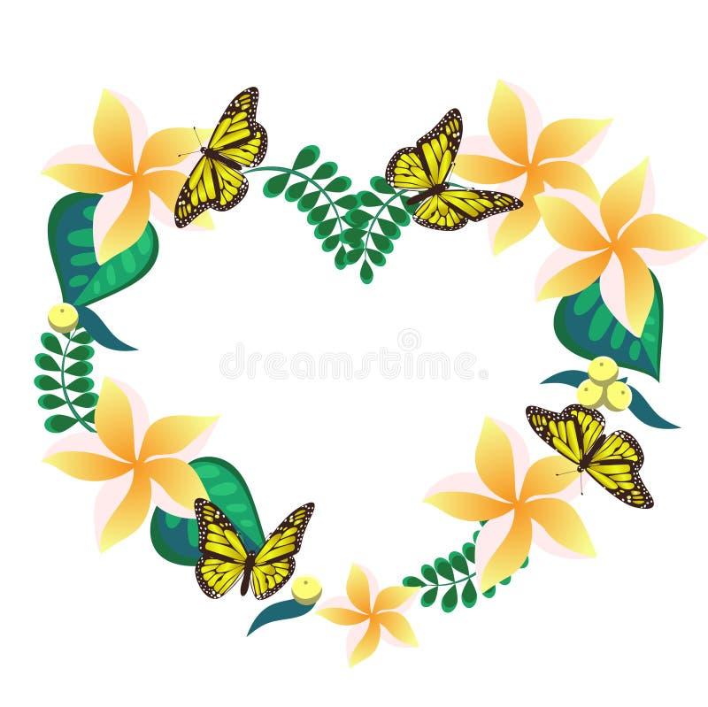 Quadro feito do plumeria e das borboletas na forma de um coração Isolado no fundo branco Ilustra??o do vetor ilustração stock