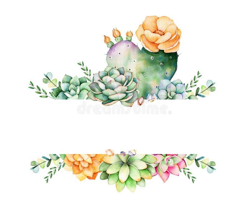 Quadro floral colorido com folhas, a planta suculento, os ramos e o cacto ilustração stock