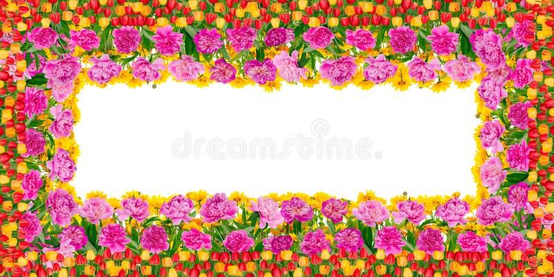 Quadro floral do aniversário do verão imagens de stock