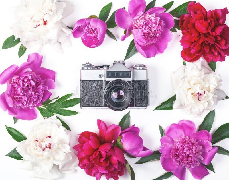 Quadro floral feito de peônias e das folhas cor-de-rosa e brancas com a câmera retro da foto no fundo branco Configuração lisa fotos de stock royalty free