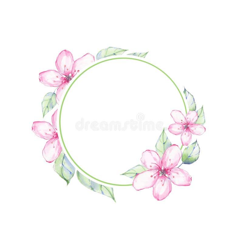 Quadro floral redondo 2 da aquarela Fundo da aguarela ilustração stock