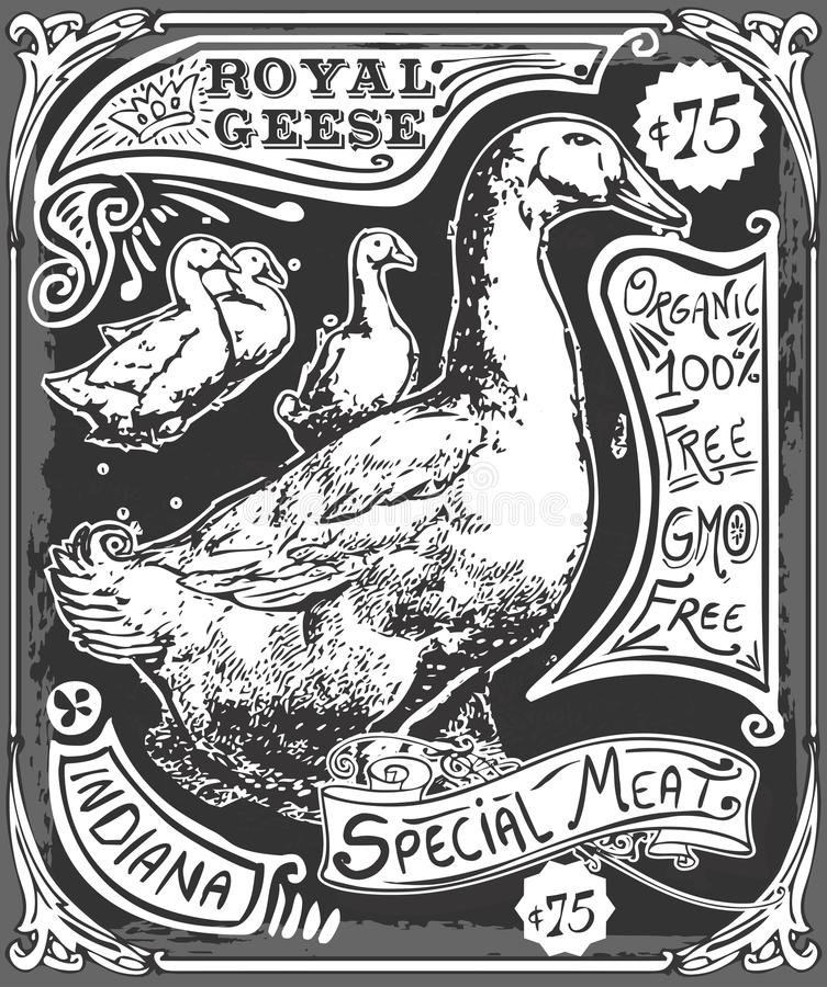 Quadro-negro da propaganda do ganso do vintage ilustração stock